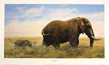 "JONATHAN TRUSS ""Jumbo Junior"" elephants calf savannah SIZE:33cm x 61cm  RARE"