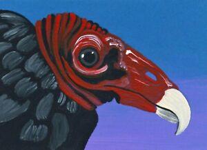 ACEO ATC Original Miniature  Turkey Vulture Bird Wildlife Art -Carla Smale