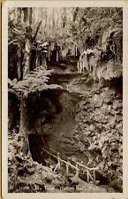 VTG Lava Tube at Hawaii National Park RPPC Real Photo Postcard
