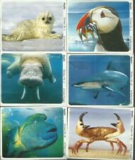 Ferrero - duplo - Ozeane der Welt - 7 Sticker  - Welt - Meer - Tiere