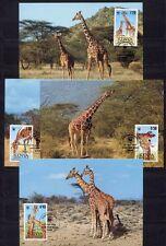 s3732) KENYA 1989 MNH** WWF, Reticulated Giraffe 4v MAXICARDS