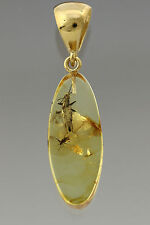 STONEFLY NYMPH Genuine BALTIC AMBER Silver Gold Plated Pendant 3.1g p160818-32
