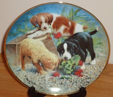 Franklin Mint Triple Trouble puppies plate Aspca Collie Golden Retriever.