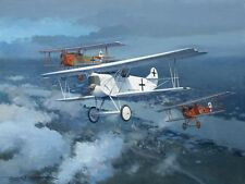 Fokker D.VII Hermann Goering WWI Plane Aviation Aircraft Painting Art Print