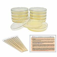 Prepoured Lb Agar Plates And Cotton Swabs Exclusive Free Science Fair Project
