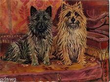 1930 Book Plate Print Dog Painting F T Daws Cairn Terrier Jock Hutchinson Sandy