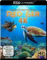 RED SEA (4K UHD) - MAYER,TIMO JOH.   ULTRA HD BLU-RAY NEW