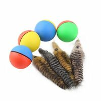 Color Random Interactive Beaver Ball Pet Chaser Self Rolling Cat Toy