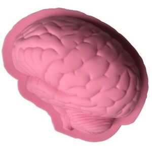 Brain 3D Silicone Baking Jelly Mould Cake Shaping Bake Tool 22x16x6cm