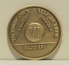 Alcoholic 6 Year Recovery 6 Yr Chip Medallion Coin Medal Token  AA Anonymous