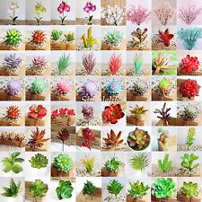 Artificielle succulent réaliste fleurs tige plante feuillage jardin décoration