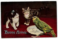 "JOLIS CHATS . BEAUTIFUL CATS .CATS.CHATS.PERRUCHE .RAPHAEL TUCK ""OILETTE"" ."
