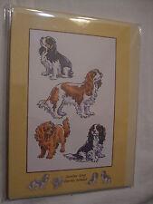 CARTE + ENVELOPPE - chien   CAVALIER KING CHARLES