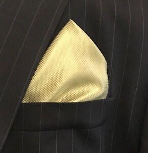 New Men's Green Satin Silk Pocket Square Hankie Hankerchief NWOT