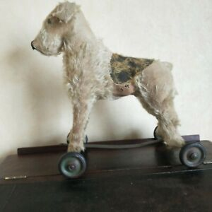 Vintage antique dog on wheels,mohair fox terrier foxy dog,pull along toy.