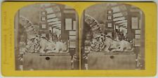 Paris Expo 1867 Le Lion endormi Prusse Allemagne Photo Stereo Vintage Albumine