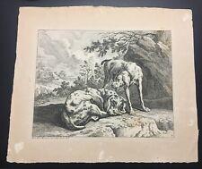 Johann Elias Ridinger Hound Dog Engraving C.1728 Plate No.9