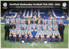 "Sheffield Wednesday 2002-03, squad photo,  23"" x 16"" - 59 x 41cm FOOTBALL POSTER"