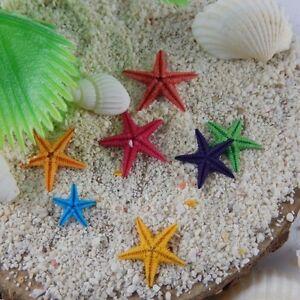 20x Natural Mini Starfish Nautical Decor DIY Jewelry Making Crafts Decorations