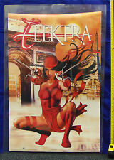 """Elektra Poster by Greg Horn 22"""" by 34""""  Marvel Comics T"""