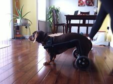 Dog Wheelchair/ Comes Ready To Roll!! For Dogs Under 30 Lbs