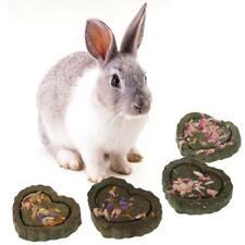 2pcs Pet Hamster Teeth Grinding Grass Toy Guniea Pig Rabbit Chinchilla Chew Toy