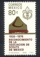 Mexico 1976 Scouts/Scouting/Youth/Leisure/Badge/Scout Hat 1v (n25822)