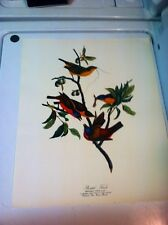 "Vintage Audubon Print ""Painted Finch""17""x14""colored Litho"