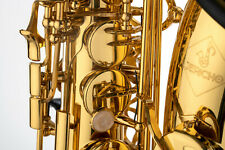Jericho Alto Saxophone in Gold Lacquer - Student Saxophone - Level Beginner