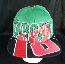 Bobby Labonte Hat Chase NASCAR All Over Racing Snapback Cap