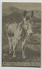Early Jack the Donkey Discoverer Famous Wealth of Coeur D' Alene Idaho postcard