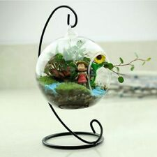 Hanging Glass Vase Flower Container Terrarium Home Decor Plant Hydroponic Clear
