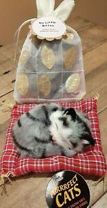 Cute little sleeping cat / kitten on cushion, new with label