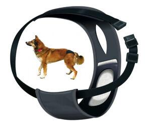 Trixie Schutzhöschen für Hunde Schutzhose schwarz bei Läufigkeit Größenauswahl