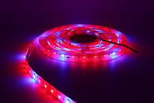 LED Plant Grow Strip Light 12V 5050 300LED16FT Full Spectrum Red&Blue 3/4/5:1