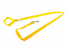 10ft Long Dog and Horse Training Lunge Lead Webbing