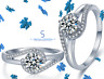 925 Sterling Silver Engagement Embrace Wedding Ring with Cubic Zirconia Stone