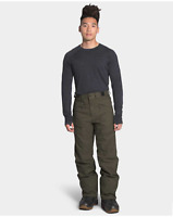 The North Face Men's Freedom Insulated Pants New Taupe Green Size M Regular #00
