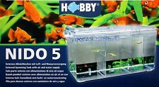 HOBBY NIDO 5 Externe ablaichbecken avec Air et of Water Supply élevage