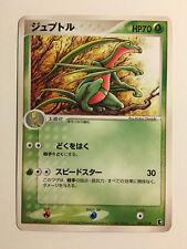Pokemon Card / Carte GROVYLE 004/019