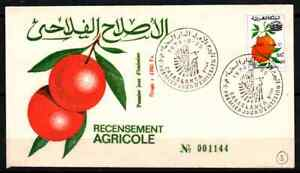 MOROCCO 1974 - FDC AGRICULTURAL CENCUS