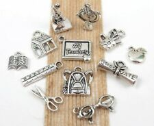 12 TEACHER Theme Charms Tibetan Silver Charm Collection Set Lot, All Different!