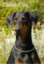 Dobermann Thank You Card By Starprint - No 1