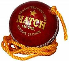 Quality Leather Match Practice Hanging Cricket Ball Red Us