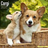 Corgi Calendar 2020 Premium Dog Breed Calendars