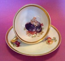 Jaeger Orchard - Tea Cup And Saucer - PMR Golden Crown Bavaria - Plum Design