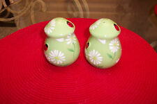 SALT & PEPPER SHAKERS LADY BUG AND DAISY DESIGN SIMPLY BEAUTIFUL