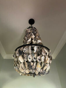 LARGE OYSTER SHELL CHANDELIER
