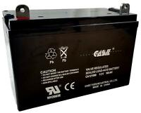 Renogy 100Ah 12V Deep Cycle AGM Battery Solar Power Replacment Battery By Casil