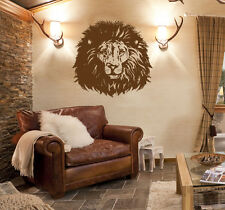 ik933 Wall Decal Sticker lion head africa safari big cat bedroom